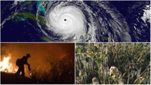 What a Disaster! 2017 Weather Was Truly Historic