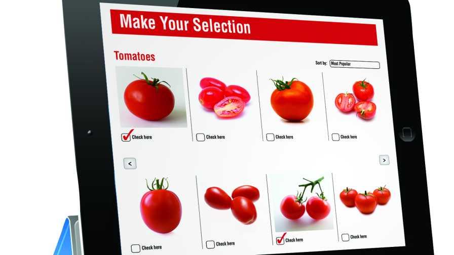 Online produce retailing model