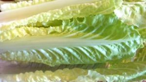 Consumers and Retailers Urged to Dump Yuma-Grown Romaine Lettuce
