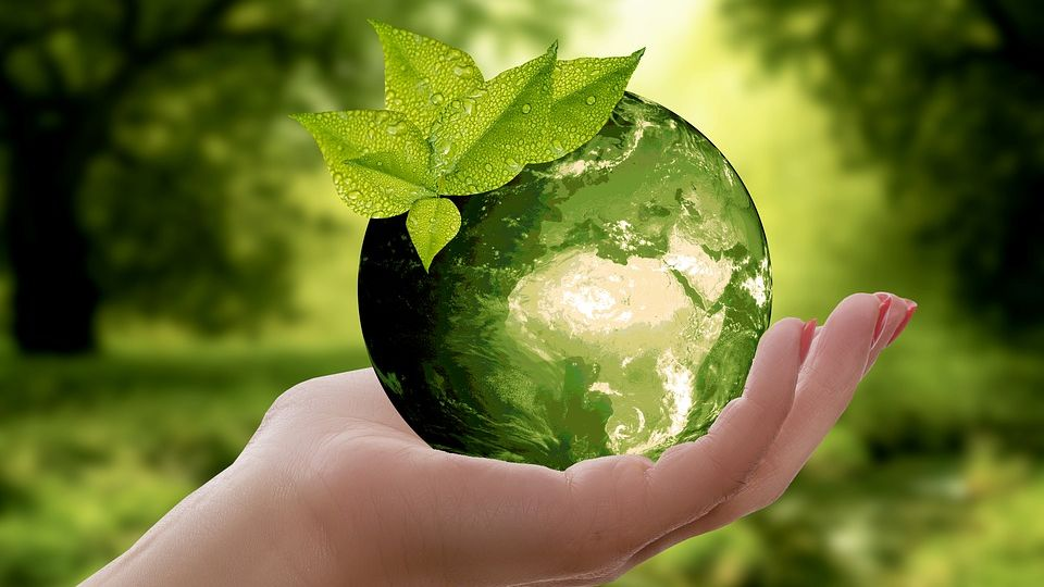 Sustainability-green-world-held-in-hand-FEAUTRE