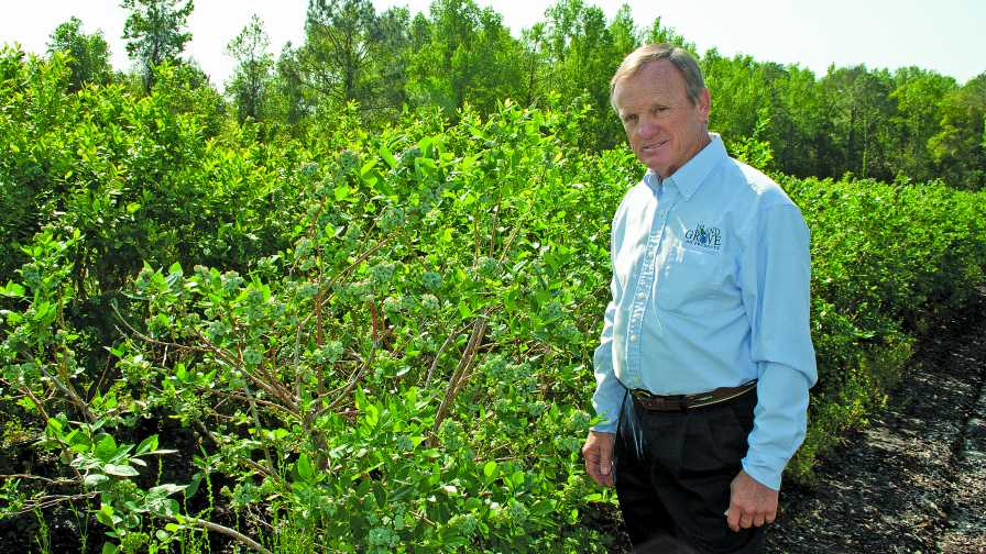 Ken Patterson of Island Grove Ag Products in Hawthorne, FL