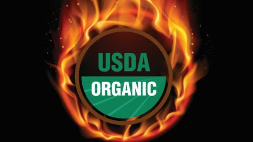 Ways Produce Growers Can up Their Organic Game