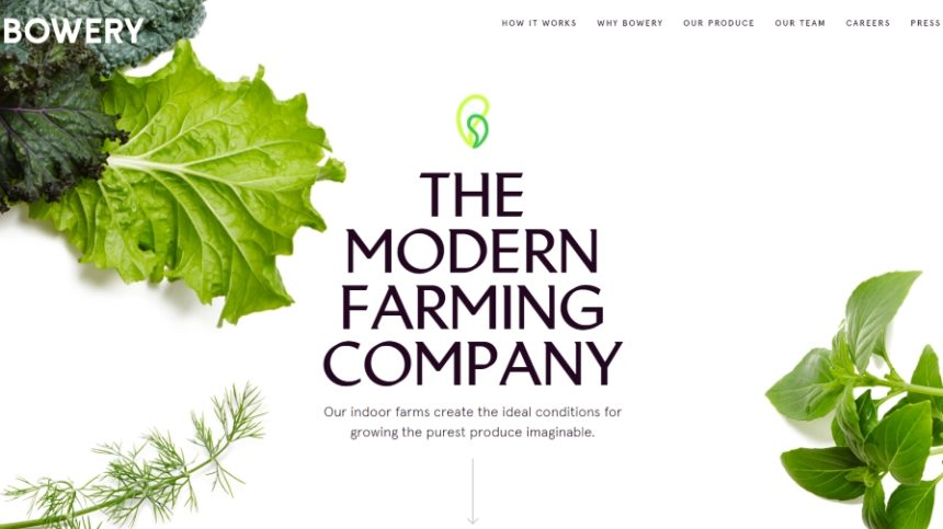 Want to Build Your Farm Brand? Plot How You Can Get TV Exposure