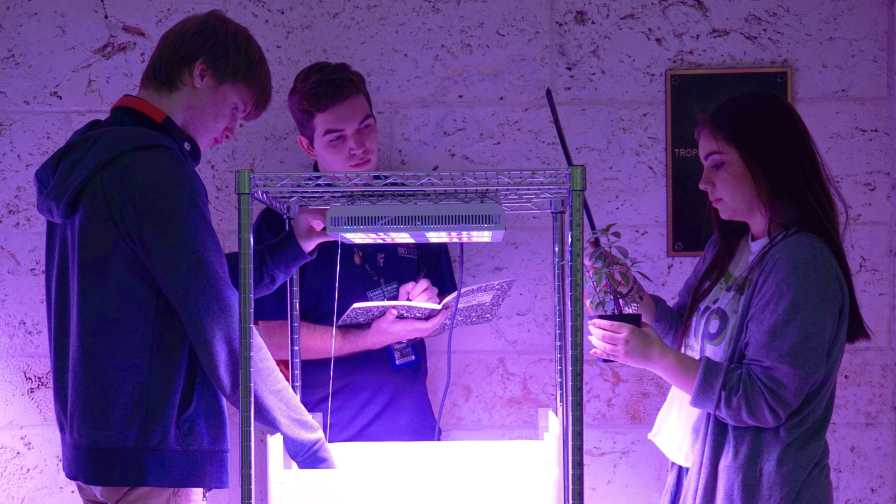 High school students conduct research for NASA at Fairchild Botanic Garden