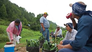4 Reasons to Use a Farm Labor Supervisor Training Program