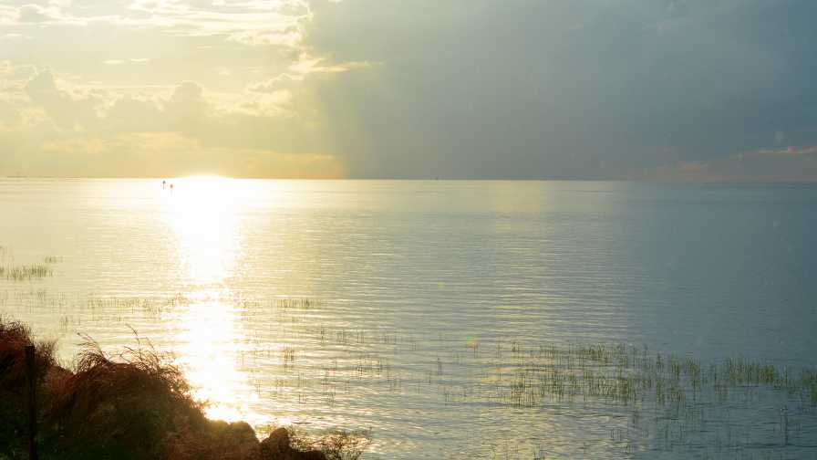 Sunshine on Lake Okeechobee