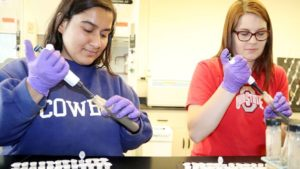 Fast, Inexpensive Nitrogen Soil Test in the Works for Farmers