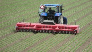 Automated Weeders Have Arrived in Vegetable Fields