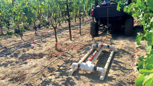 How to Make Vineyard Management More Precise