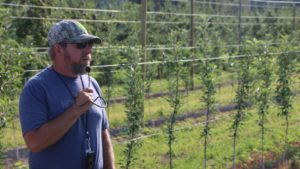 Super Spindle Apple Plantings Pique Interest at IFTA Tour Finale
