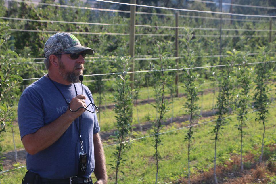 Super Spindle Apple Plantings Pique Interest at IFTA Tour Finale