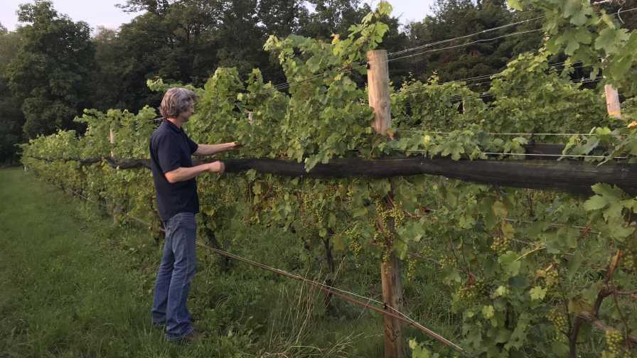 Paul Brock of Silver Thread Vineyard