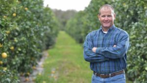 The Pursuit Grows to Build Organic Matter in Citrus