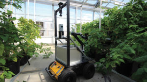 Robot Hopes to Solve Challenge of Under-Cover Pollination for Berries