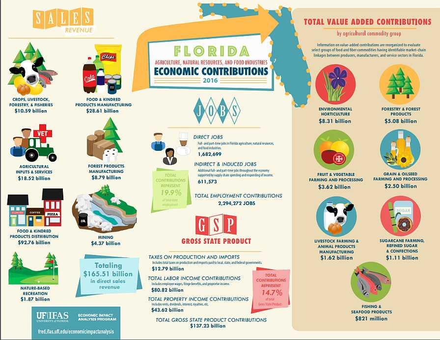 UF/IFAS economic impact analysis infographic
