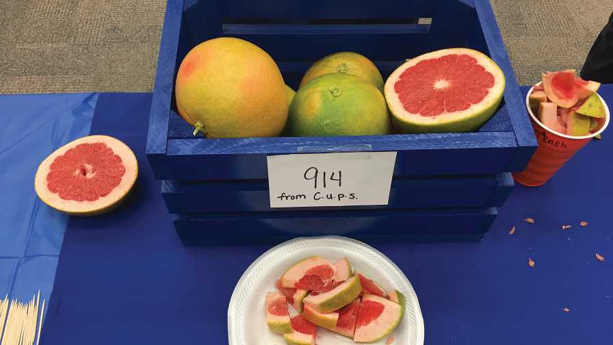 See the Future of Florida Citrus on Full Display