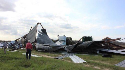 Hurricane Michael a Multibillion-Dollar Pain for Georgia Agriculture