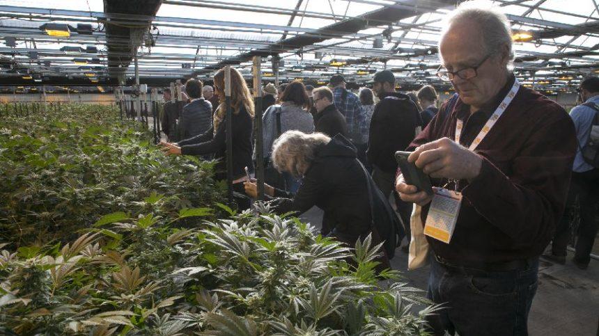 Nearly 1,000 Attend Organic Grower Summit