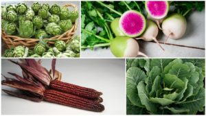 11 Less Common Specialty Crops You'll Want to Check Out