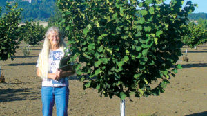 New Hazelnut Release Resists Eastern Filbert Blight