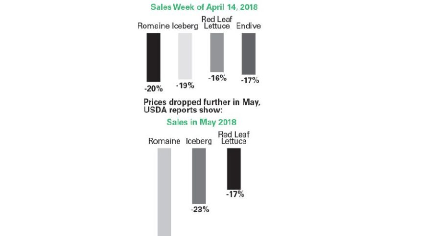 The Economic Fallout from the Romaine Recalls [Infographic]