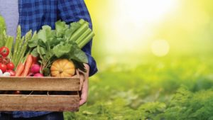 Which Issues Have Your Attention? [2019 State of the Vegetable Industry]