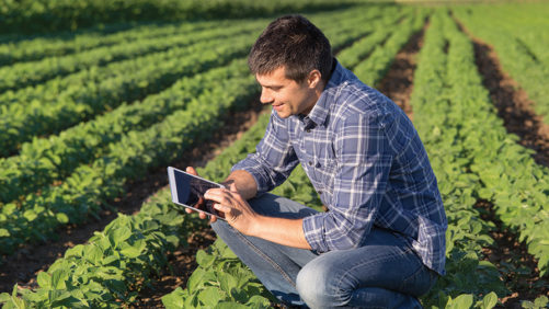 You Have Embraced Precision Agriculture [2019 State of the Vegetable Industry]