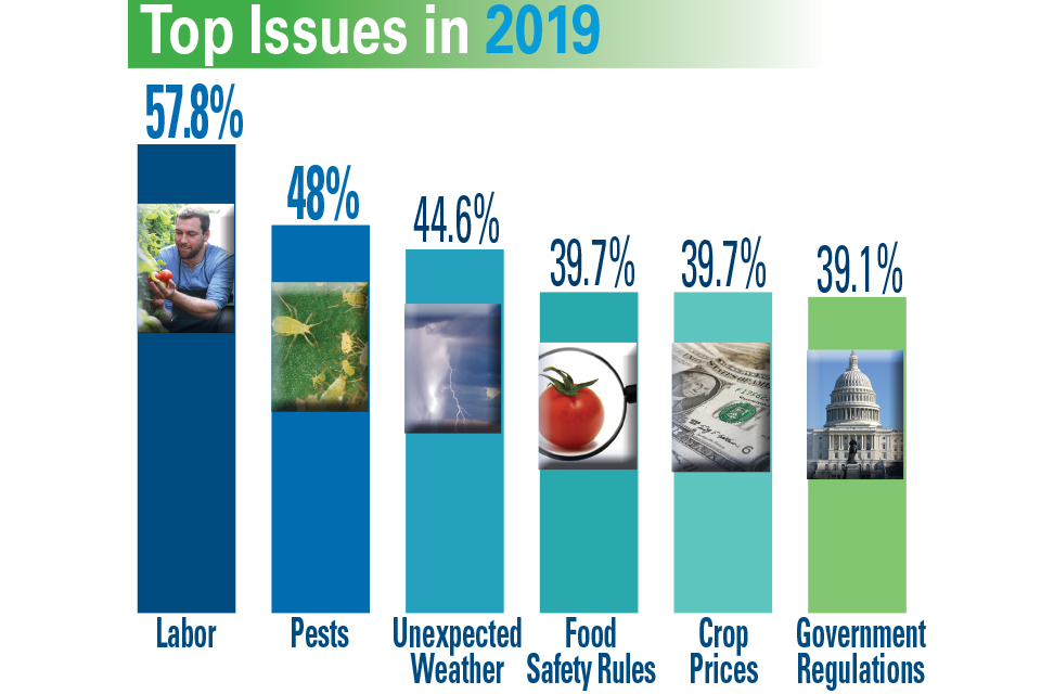 Top-Issues-in-2019_100