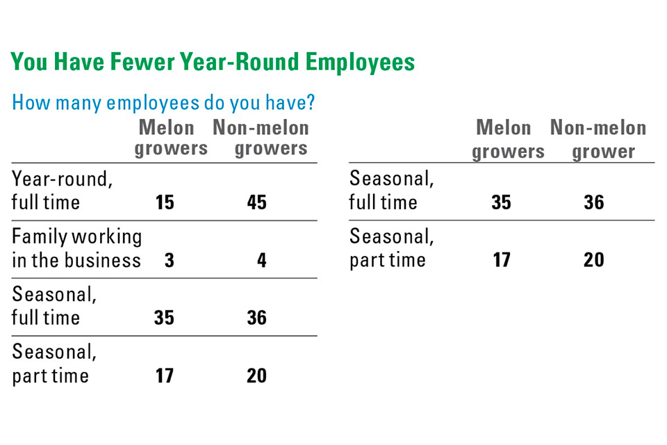 Melon-Stats_Year-Round-Employees