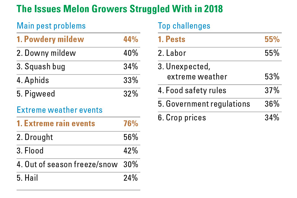 Melons-Stats_Issues-in-2018