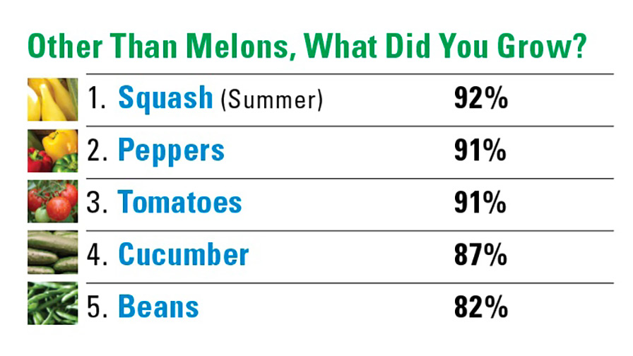 Other-than-melons-what-did-you-grow_feature_