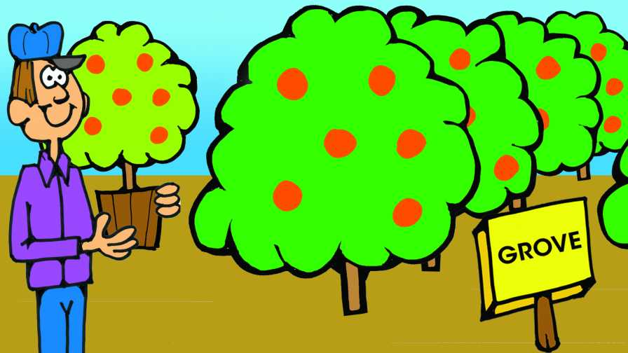 Joe Citrus Farmer cartoon illustration