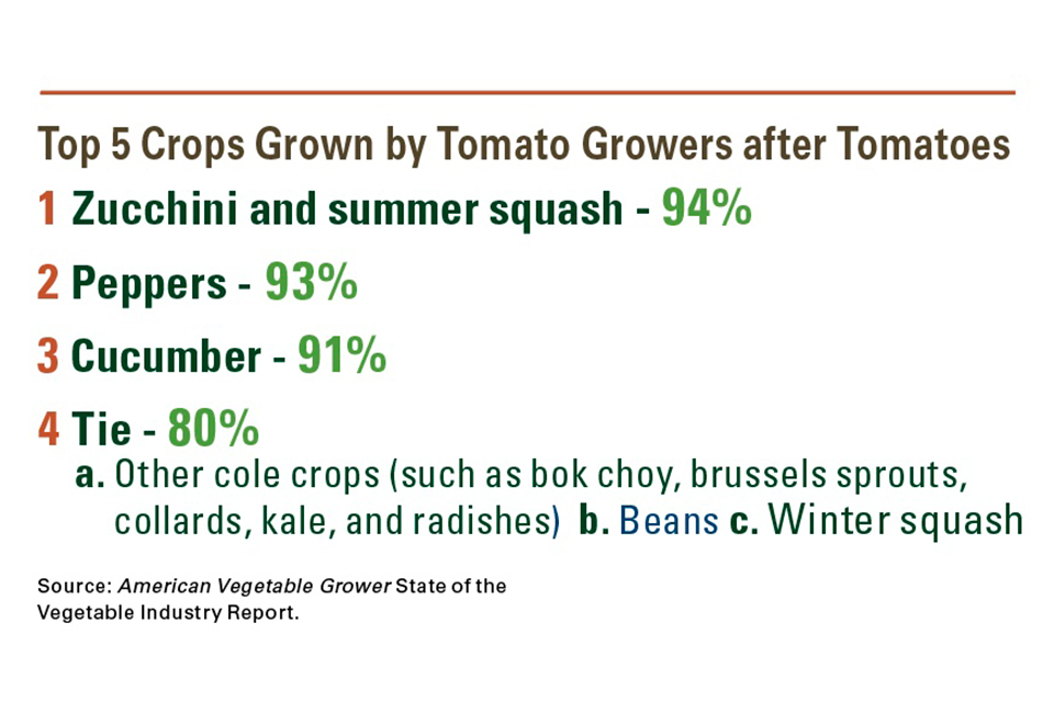 Top-5-Crops-Grown-After-Tomatoes