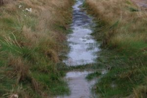 ditch-with-water-photo-by-Cahn