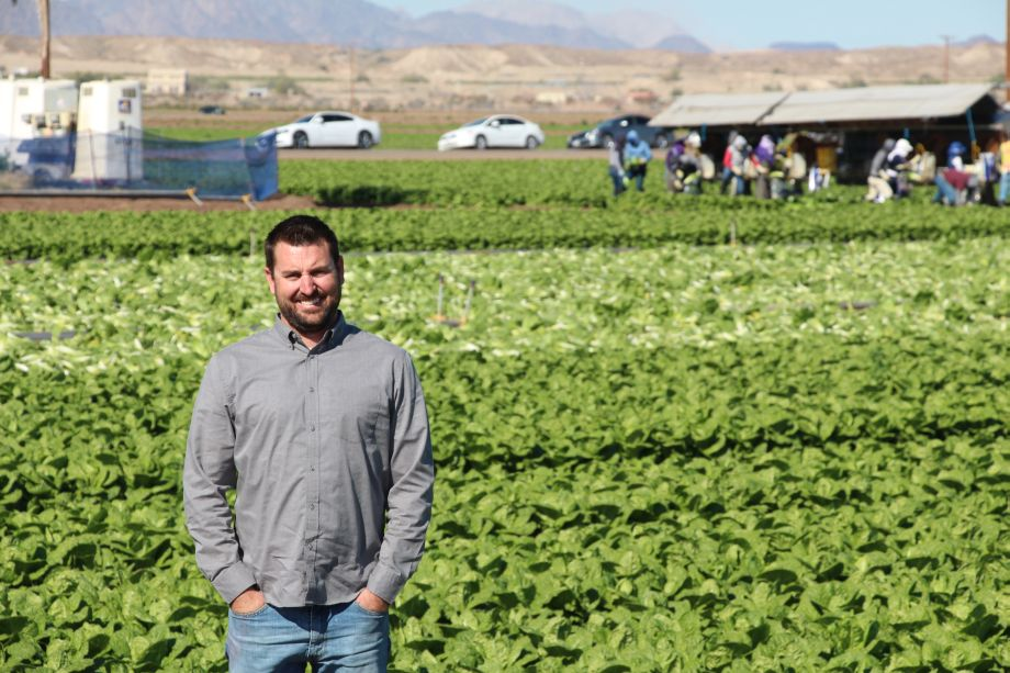 Mike-Clements-Top-Flavor-in-romaine-field