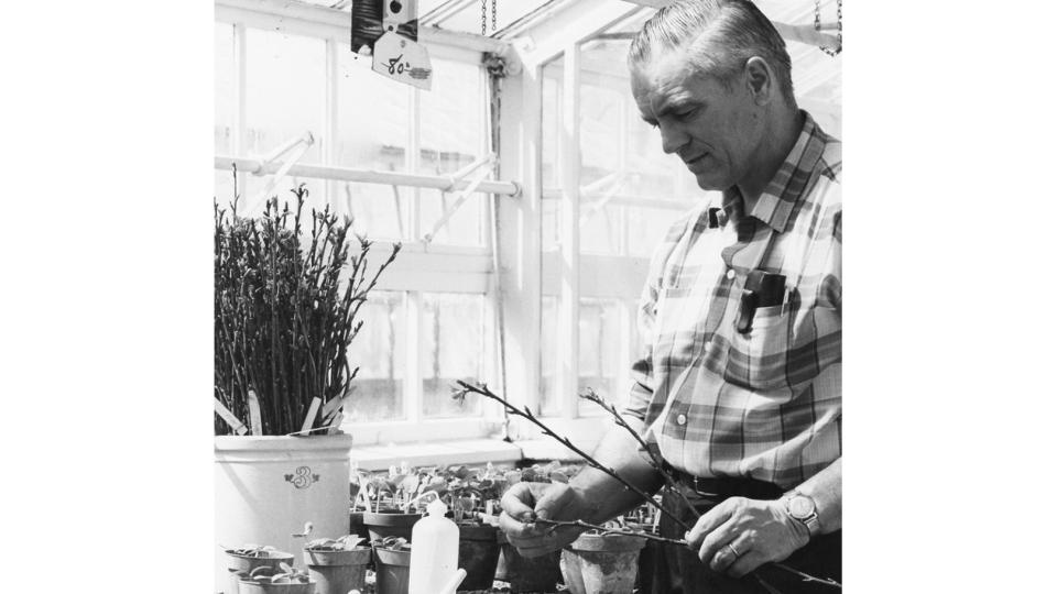 Father of 'Jonagold' and 'Empire' Apples Passes Away at 100