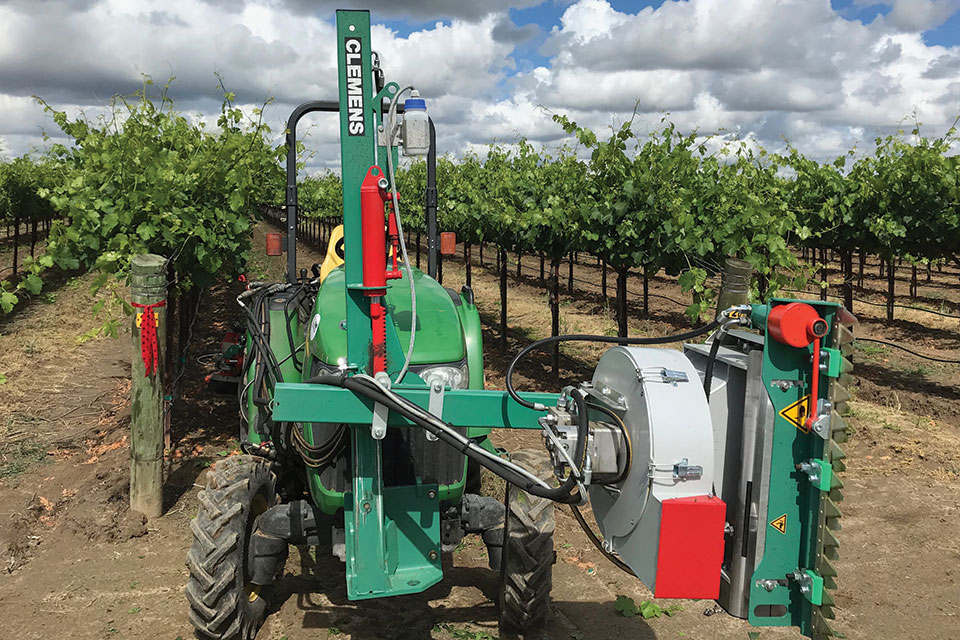 mechanical leafing vineyard