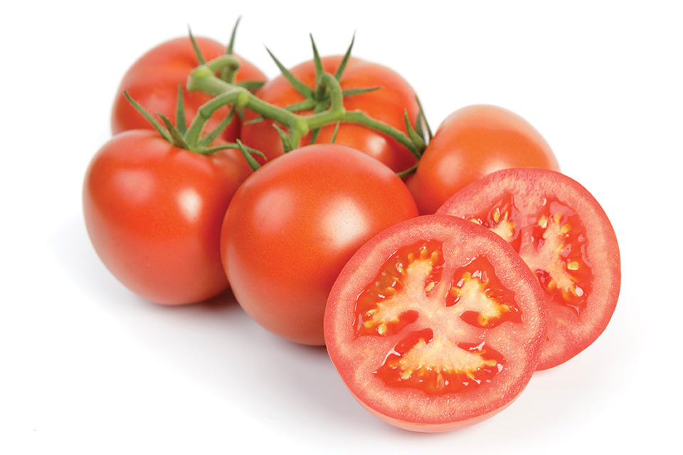 The Top Tomato Varieties for 2019
