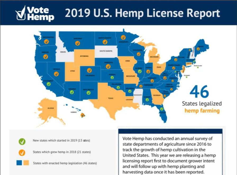 2019 Hemp crop license data in the U.S.