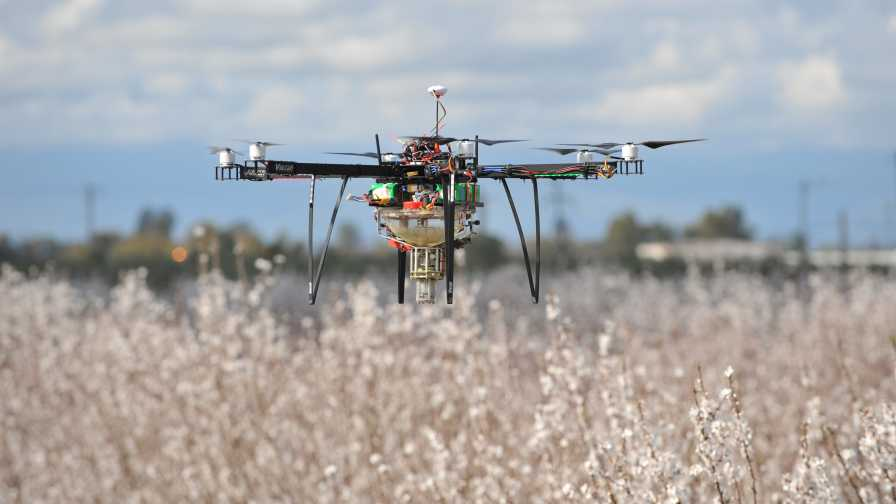 Drone hovering over crops