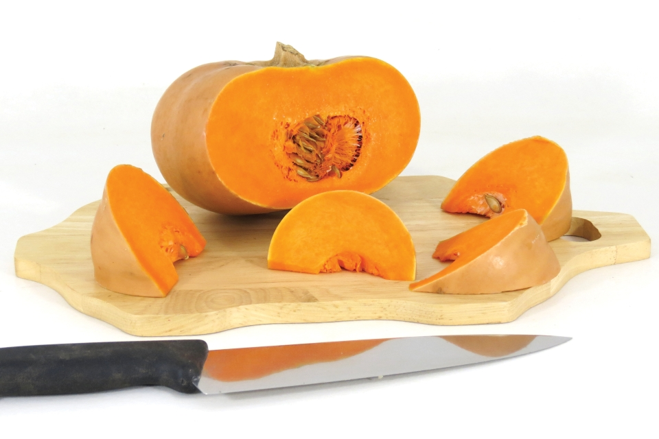 6 Squash Varieties to Fill Out Your Crop Mix