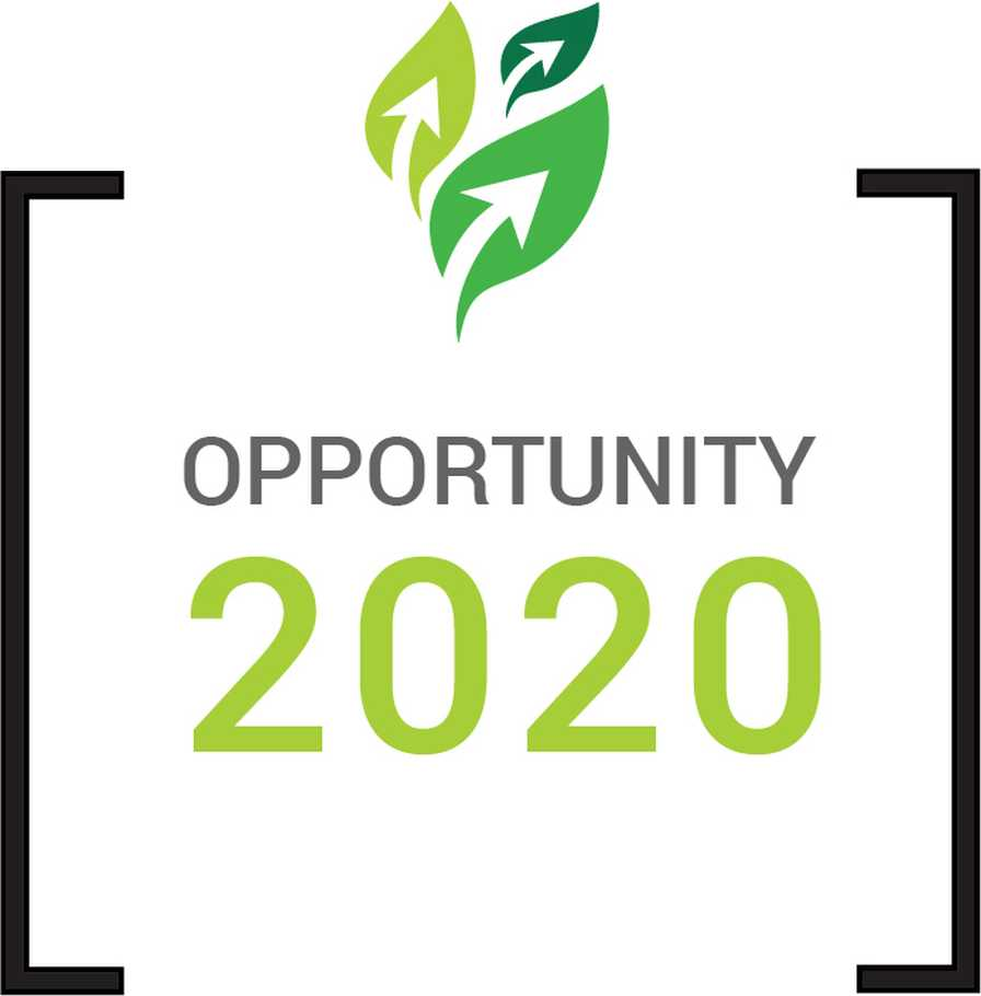Opportunity 2020 lgo