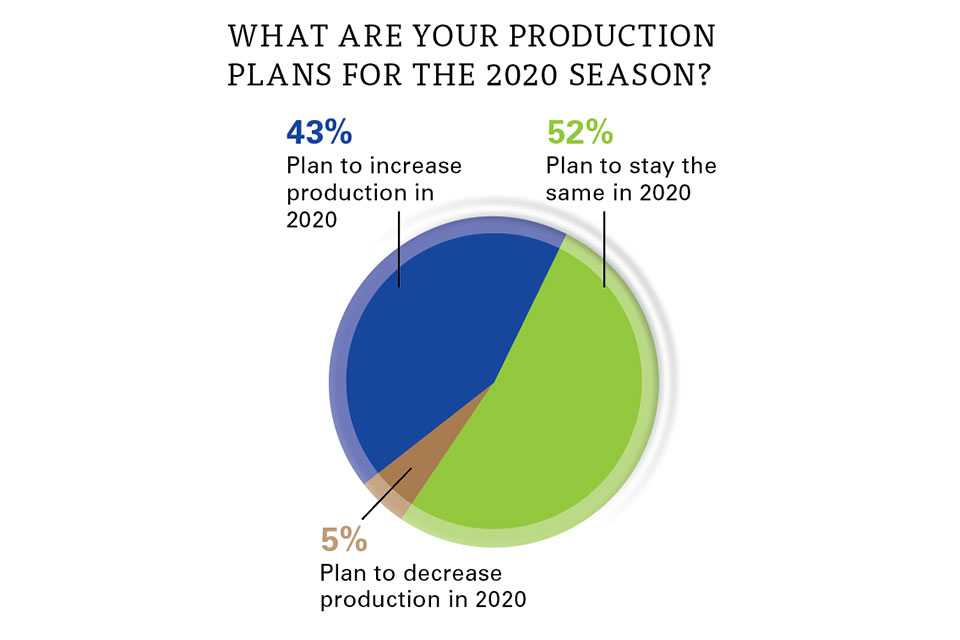 Berries state of the industry 2020 chart on production plans