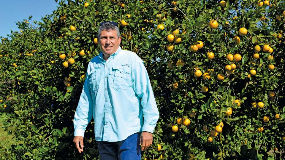 Ed James in front of his citrus trees in Florida