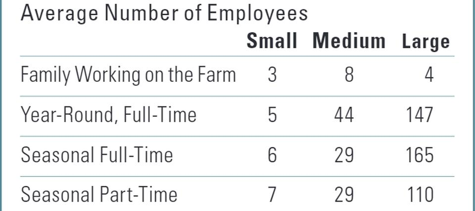 How producers of different sizes differ on the workforce chart