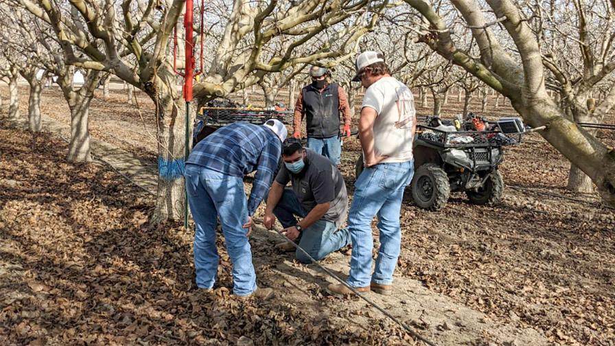 Soil moisture probe installation in the field